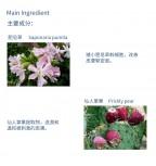 30+ Natural Organic Magic Facial Cream ( Plant stem cell + Collagen ) 50ml